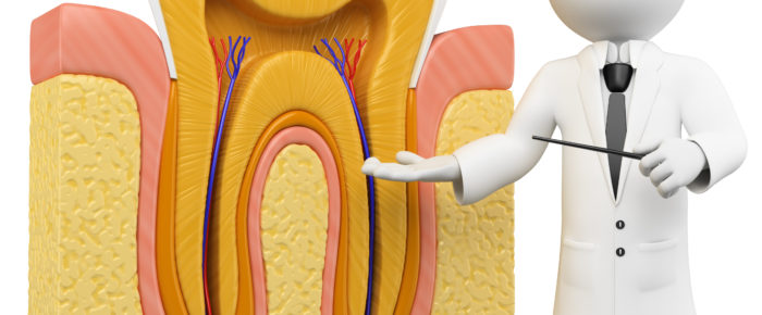 Useful Information About Root Canal Treatment