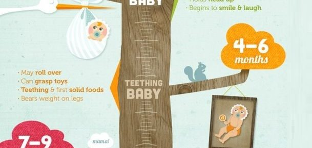All Stages Of Baby Development – Captured In Infographics