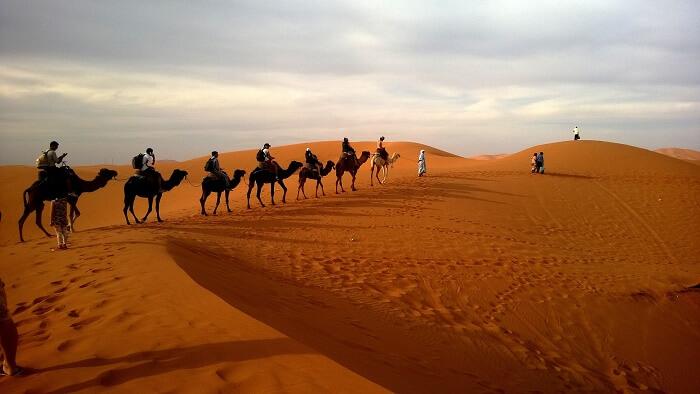 camel-ride-abu-dhabi