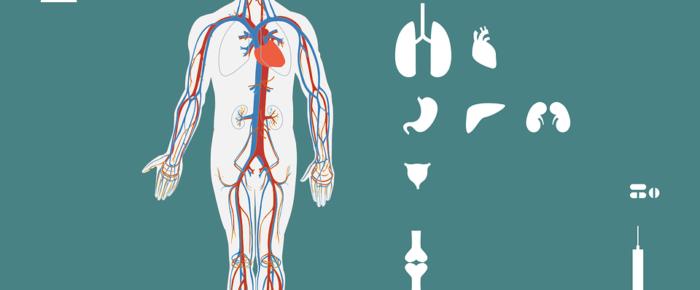 Some Important Kidney Disease Diet Tips