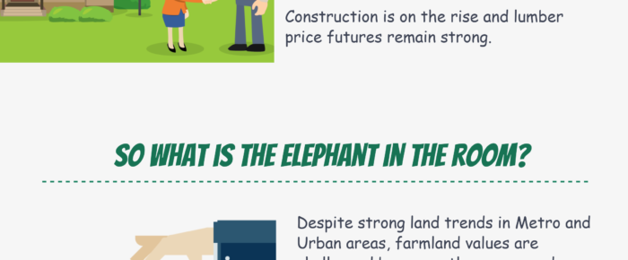 Reasons Land is an Attractive Investment Option in the US