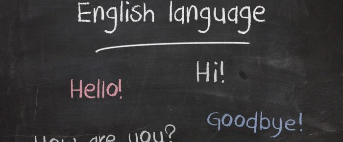11 Promising Career Opportunities After English Language Course